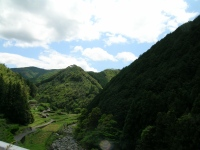 Tosayama1